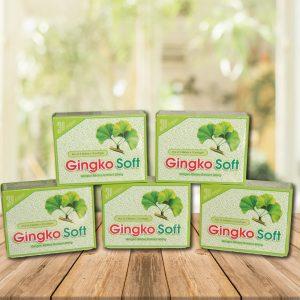gingko-soft